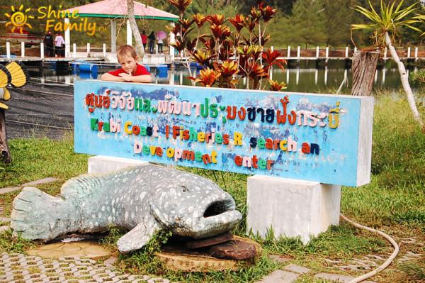 Рыбная ферма в Ао Нанге