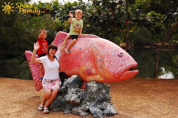fish_035