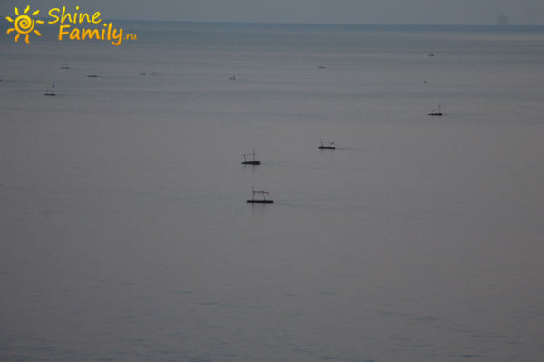 утром все рыбаки в море