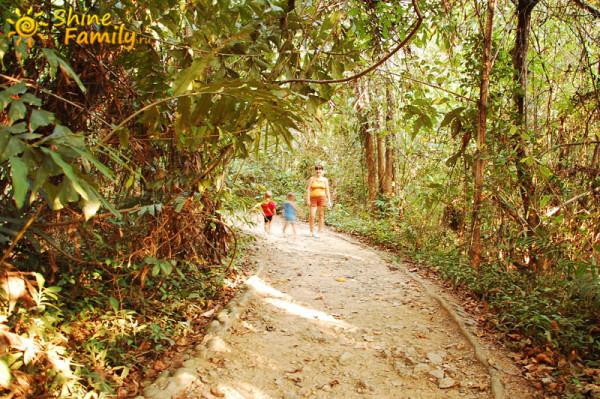 the_mangroves_026