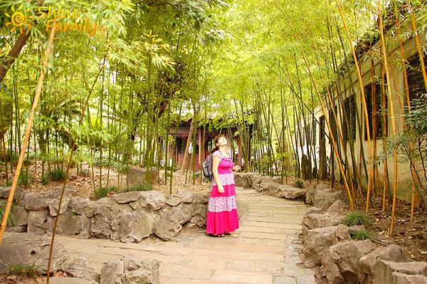 Yuyuan_Garden_010
